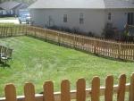 alligator fence 005_img