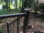 North-Cedar-Lake-11